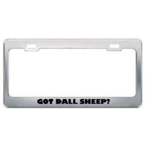 Got Dall Sheep? Animals Pets Metal License Plate Frame Holder Border