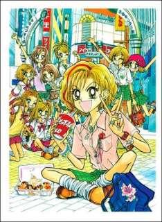 Gals(Super Gals)Vol.9 Mihona Fujii (Author) Manga book