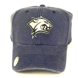 HAMPSHIRE WILDCATS NAVY CAP HAT FLEX FIT FITTED NEW