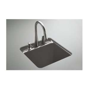 Park Falls Park Falls 21 Undermount Cast Iron Utility Sink with Si