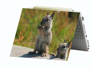 Squirrel Chipmunk Laptop Netbook Skin Decal Cover