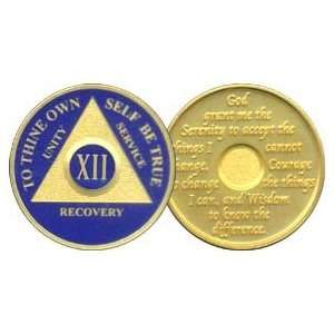 12 Year 24K Gold Plated AA Birthday   Anniversary Recovery