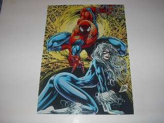 MARVEL COMICS SPIDERMAN & BLACK CAT POSTER PIN UP