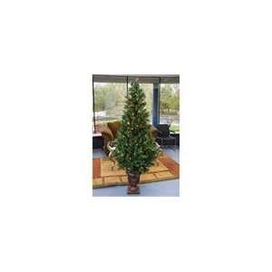 5 Pre Lit Potted Royal Fir Artificial Christmas Tree