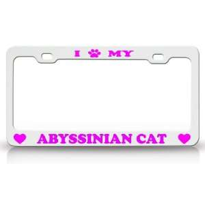 I PAW MY ABYSSINIAN Cat Pet Animal High Quality STEEL