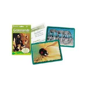 Learning Resources Animal Classifying Cards, Grasslands: Toys & Games