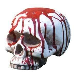 Skull Bloody W/O Jaw: Home & Kitchen